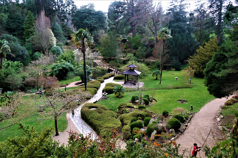 Bright colours of the Japanese Garden in Powerscourt Estate