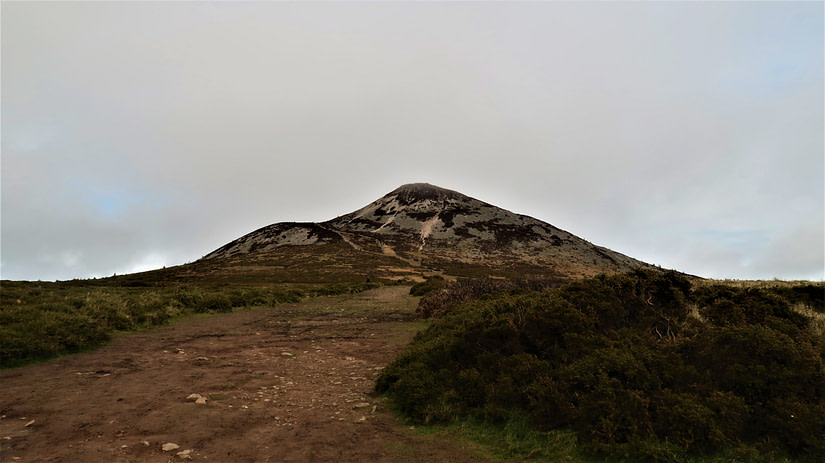 The Great Sugarloaf